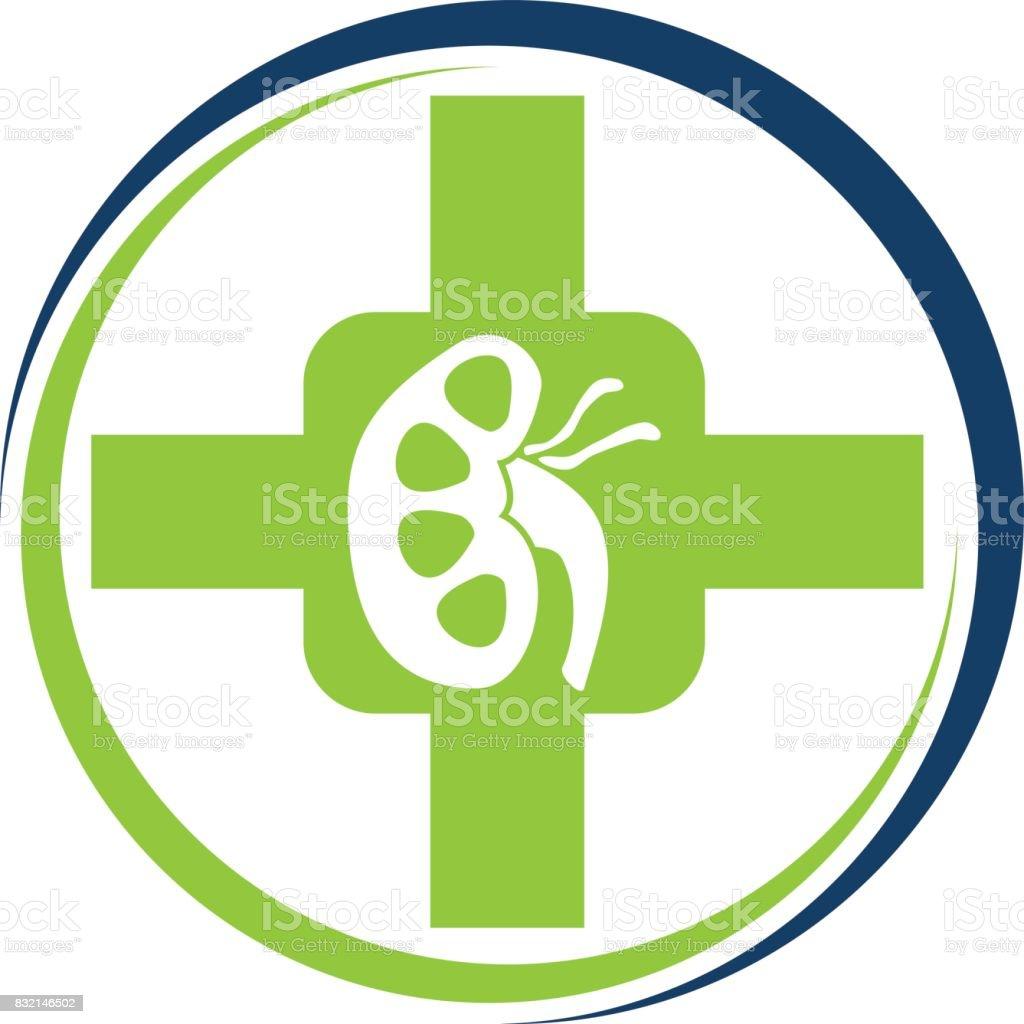 Nierekrebsgesundheitsförderung Stock Vektor Art und mehr Bilder von ...