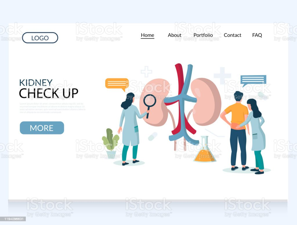 Kidney check up vector website landing page design template - Royalty-free Adulto arte vetorial