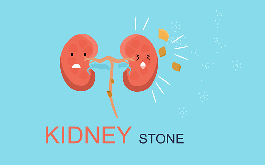 Kidney Stone concept. Cute kawaii human organ is attacked by sodium salt.Nephrology.Pyelonephritis and renal failure disease.Cystitis chronic illness.