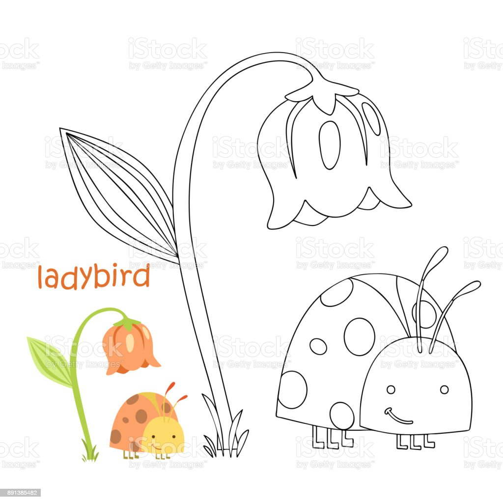 Kids Coloring Page Ladybug Stock Illustration Download Image Now Istock