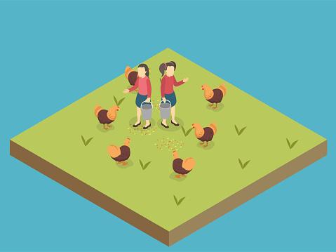 Kids feeding chicken isometric 3d vector