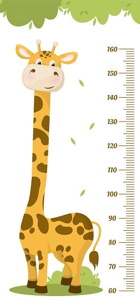 Kids height chart. Child height meter for kindergarten.