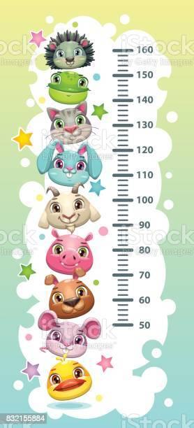 Kids height chart template with funny cartoon round animals vector id832155884?b=1&k=6&m=832155884&s=612x612&h=y2jxzacceai72s 4rbjo5xksz1z7pm1zw8rfs5ywmjy=