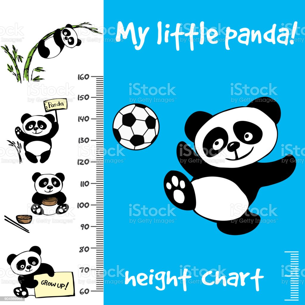 Kids height chart.Hand drawn panda vector art illustration