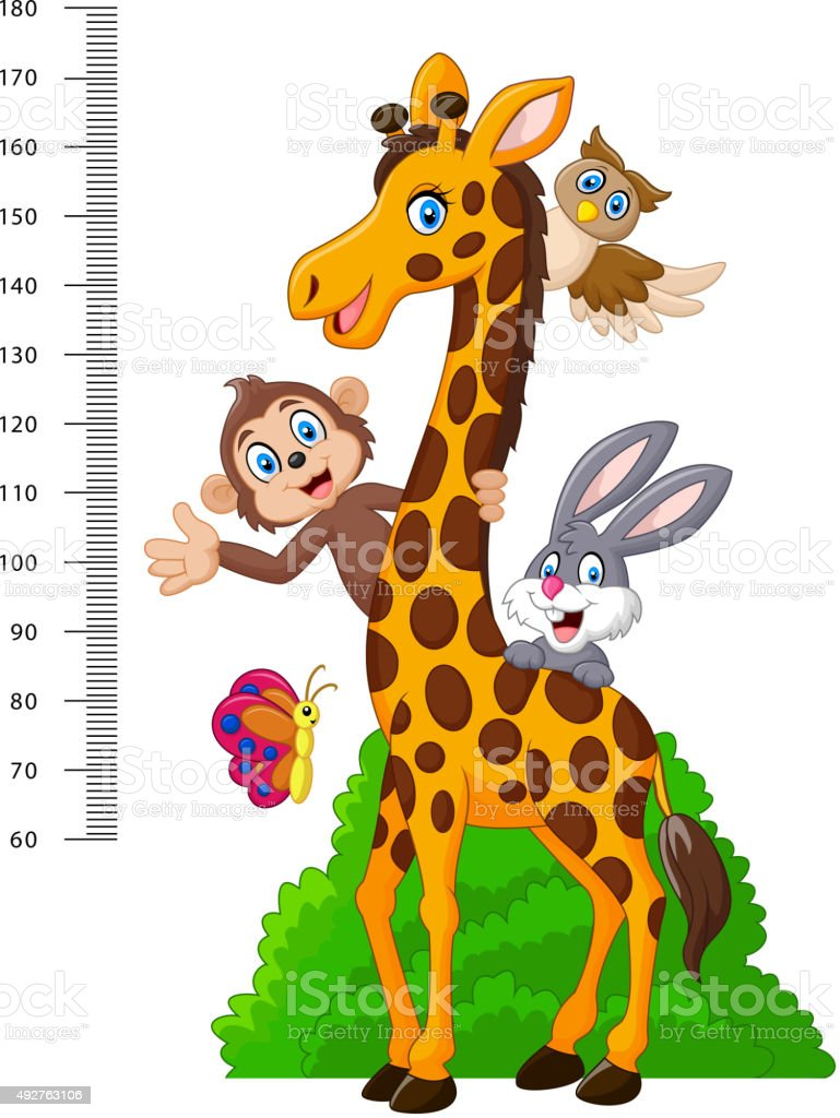 Kids height scale with funny animals vector art illustration