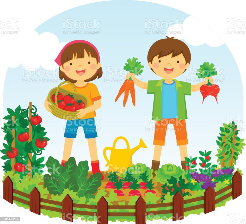 kids in a vegetable garden vector art illustration