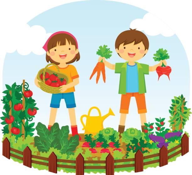 ilustrações, clipart, desenhos animados e ícones de crianças em um jardim de vegetal - horta