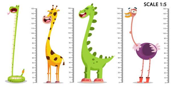 stockillustraties, clipart, cartoons en iconen met kids meter muur met een leuke cartoon giraffe, dinosaurus, struisvogel, slang en meten heerser. vectorset geïsoleerd op een witte achtergrond. - lang lengte