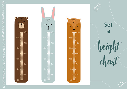 Kids space height chart. Cute wall meter with funny animals. Vector template. Cartoon zoo. Design of children's products in scandinavian style.
