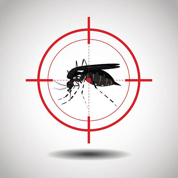illustrazioni stock, clip art, cartoni animati e icone di tendenza di uccidere la zanzara - zanzare