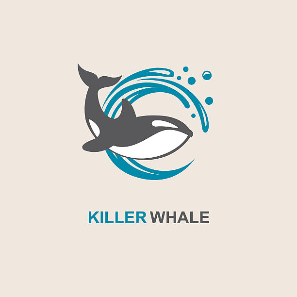 killer whale icon symbol of killer whale and sea wave killer whale stock illustrations