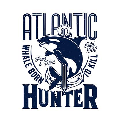 Killer whale tshirt print, mascot for marine club