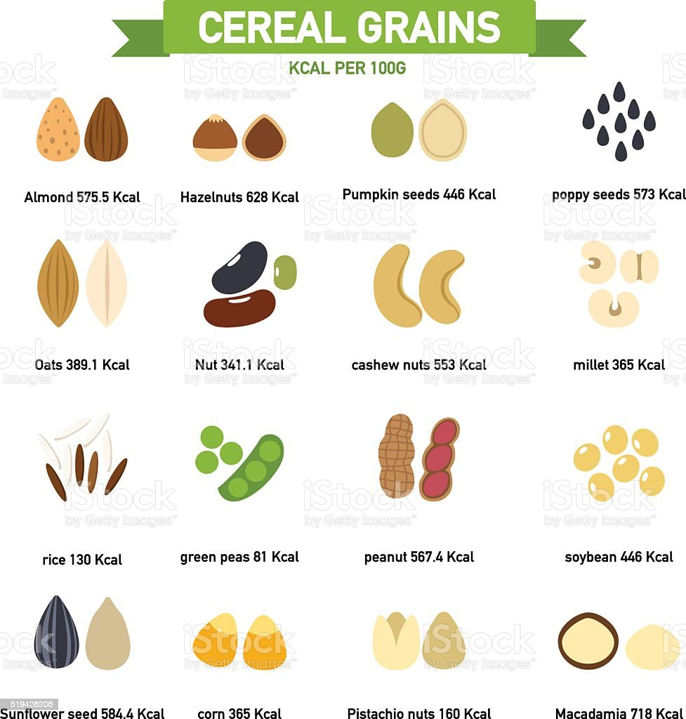kilocalorie in cereal grains per100 gram infographics.vector vector art illustration