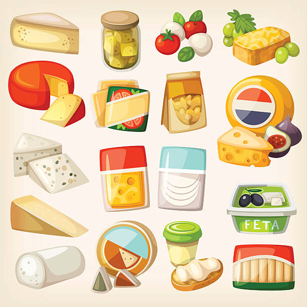 Kinds of cheese Isolated pictures of most popular kinds of cheese in packaging. Slices and pieces of cheese and some products to use them with. pickle slice stock illustrations