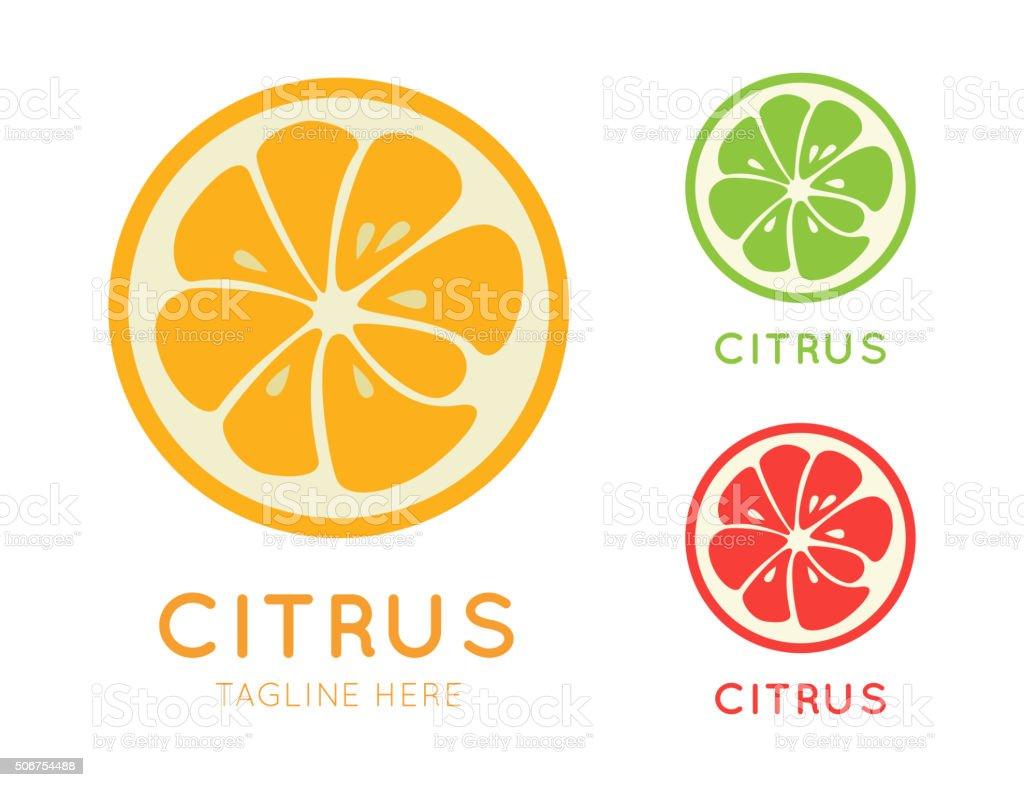 Kinds of citrus stylish icon vector art illustration