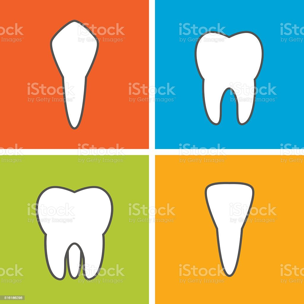 Kinds of tooth. vector art illustration