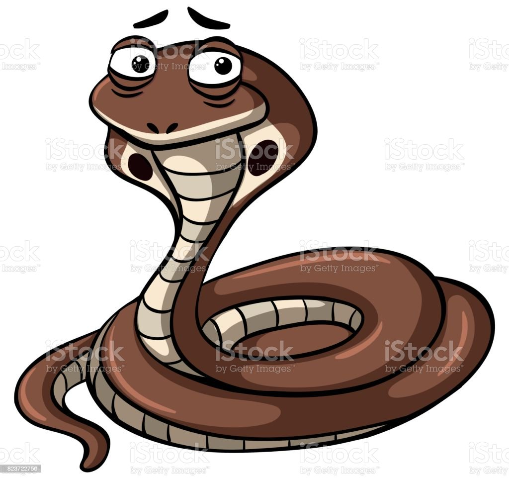 King Cobra Snake On White Background Stock Illustration Download Image Now Istock