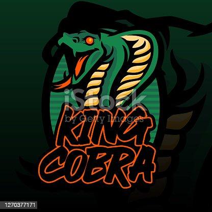 King cobra's head illustration for t-shirt, wallpaper ora emblem. King cobra illustration isolated on dark green background.