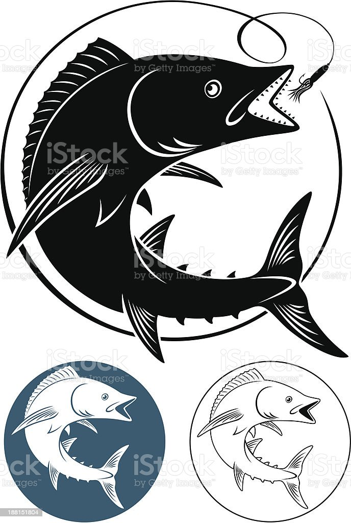 king mackerel vector art illustration