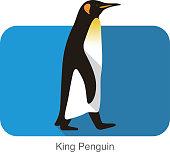istock King Penguin walking, Penguin seed series 517189166