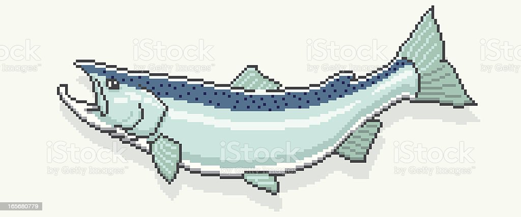King Salmon - Pixel Art Style royalty-free stock vector art