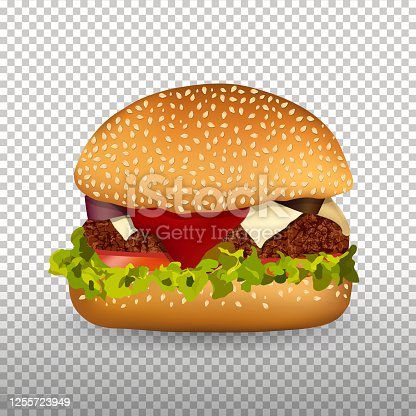 King size burger with meat tasty toppings like Onion, Tomato Ketchup, green toppings and Bun Vector illustration, fast food design element on Transparent background you can use it as Png simply copy and paste burger in your file.