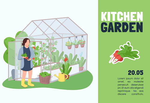 Kitchen garden banner flat vector template. Brochure, poster concept design with cartoon characters. Agriculture, seedling care, vegetables growing horizontal flyer, leaflet with place for text