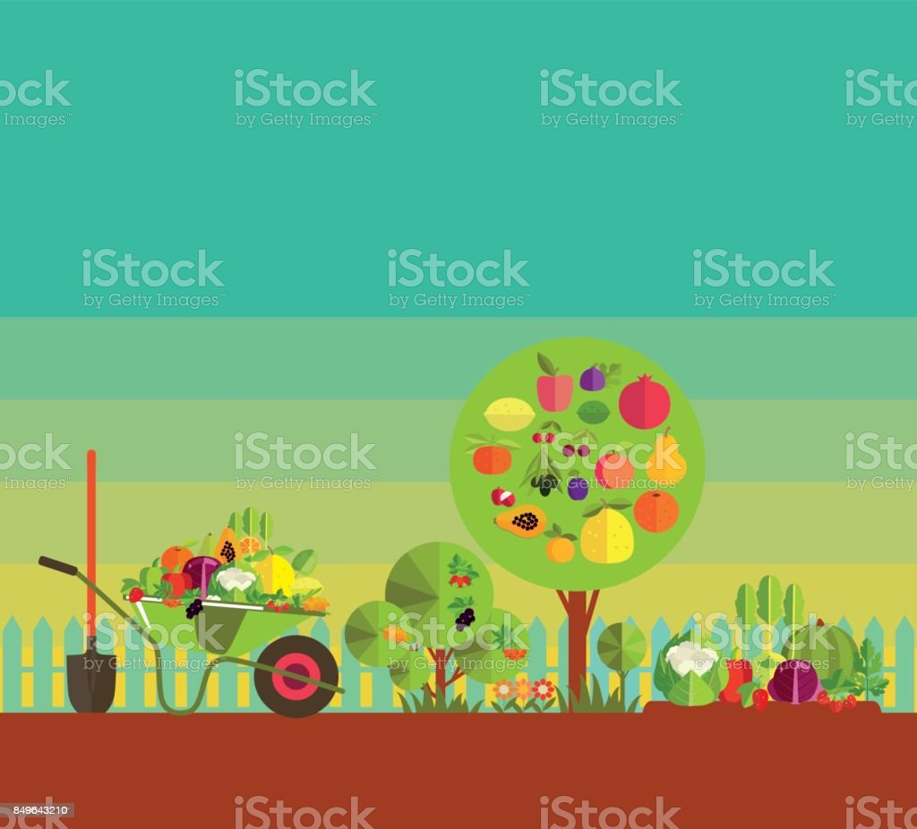 kitchen garden vector art illustration
