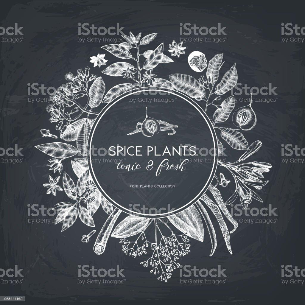 Küchendesign Gewürz An Tafel Lizenzfreies Küchendesign Gewürz An Tafel  Stock Vektor Art Und Mehr Bilder Von