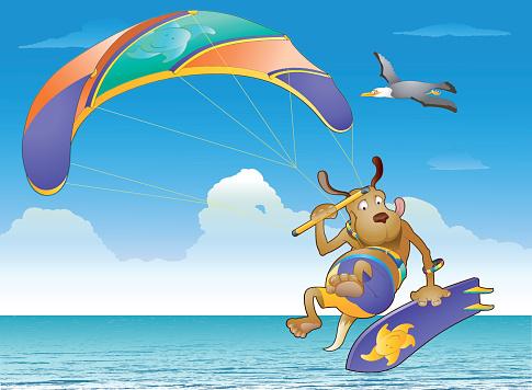 Kite Surfing Show