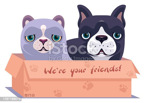 istock kitten and puppy in carton 1297188079
