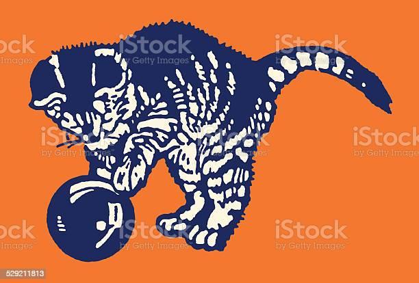 Kitten playing with ball vector id529211813?b=1&k=6&m=529211813&s=612x612&h=7w5bmjvzs60o2gkh 5q  kvydk2ore32ahidgqjw31i=