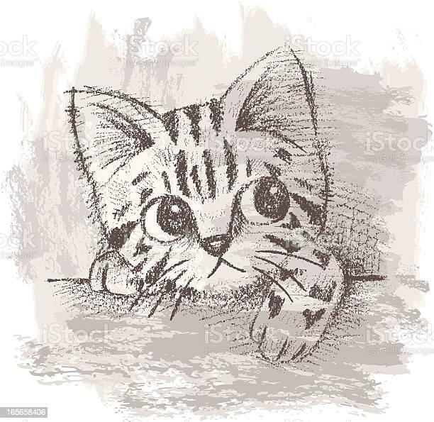Kittens portrait vector id165658406?b=1&k=6&m=165658406&s=612x612&h=fp7sq 3nobu5fd6nqcmox9ssey0nxianrlxgaqxx68s=