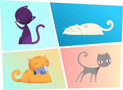 Kitty Cats kitten cat kit pussycat