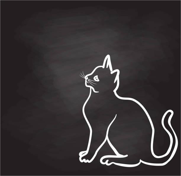 KittySketch Kitty Sketch Chalkboard animal stock illustrations