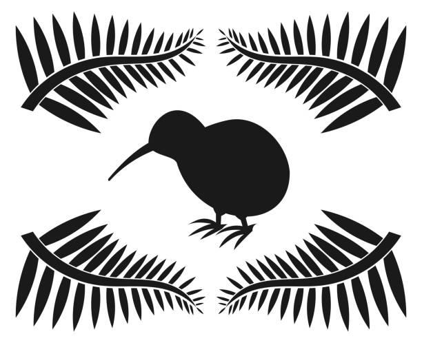 bildbanksillustrationer, clip art samt tecknat material och ikoner med kiwi och ormbunkar - kivik