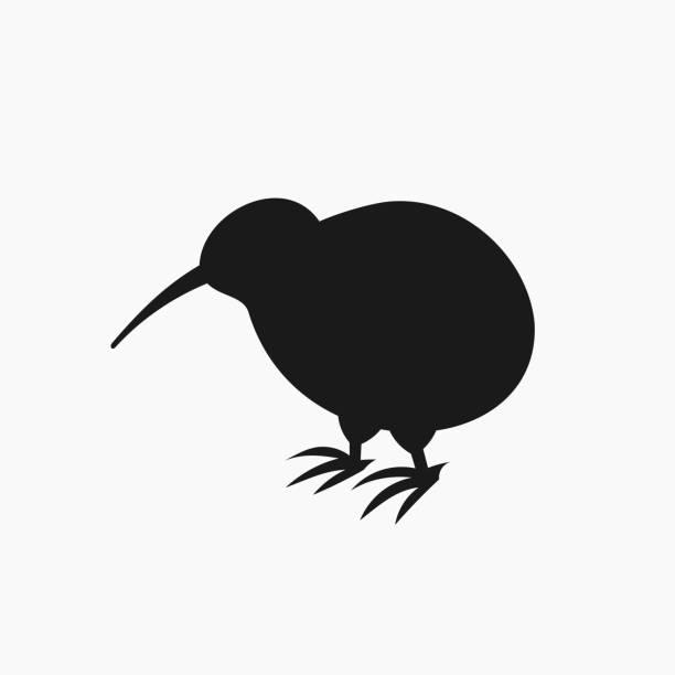 bildbanksillustrationer, clip art samt tecknat material och ikoner med kiwi bird siluett ikonen - kivik