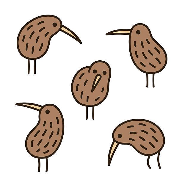 bildbanksillustrationer, clip art samt tecknat material och ikoner med kiwi birds doodle set - kivik