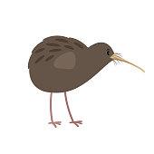Kiwi cute cartoon bird icon isolated on white background, vector illustration