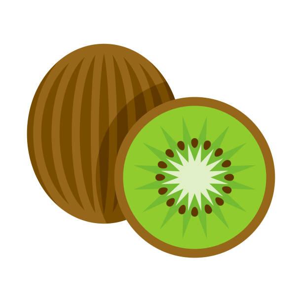 bildbanksillustrationer, clip art samt tecknat material och ikoner med kiwi platt design frukt ikonen - kivik