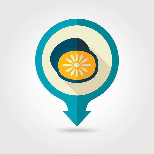Kiwi flat pin map icon. Tropical fruit vector art illustration