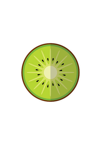 ilustrações de stock, clip art, desenhos animados e ícones de kiwi fruit isolated on white background in flat style. - kiwi