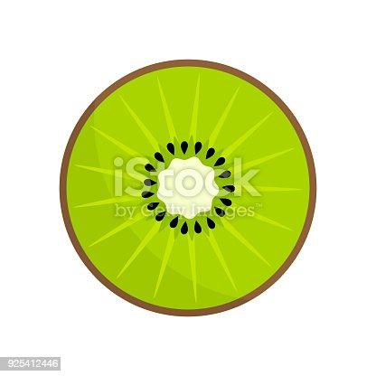 Kiwi fruit slice icon. Vector illustration