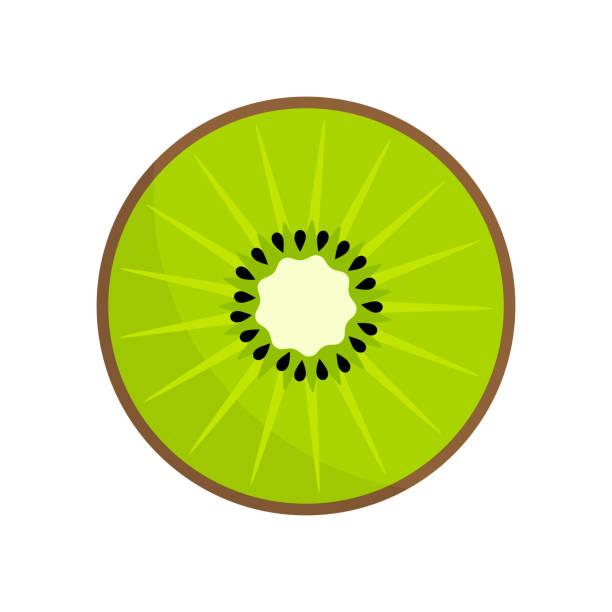 bildbanksillustrationer, clip art samt tecknat material och ikoner med kiwi frukt skiva ikonen - kivik