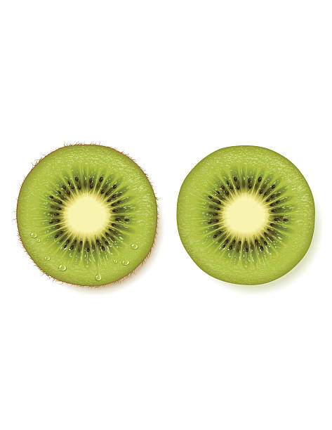 bildbanksillustrationer, clip art samt tecknat material och ikoner med kiwi fruit slice - kivik