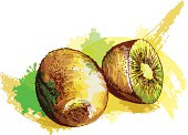 Grunge style kiwi - vector illustration