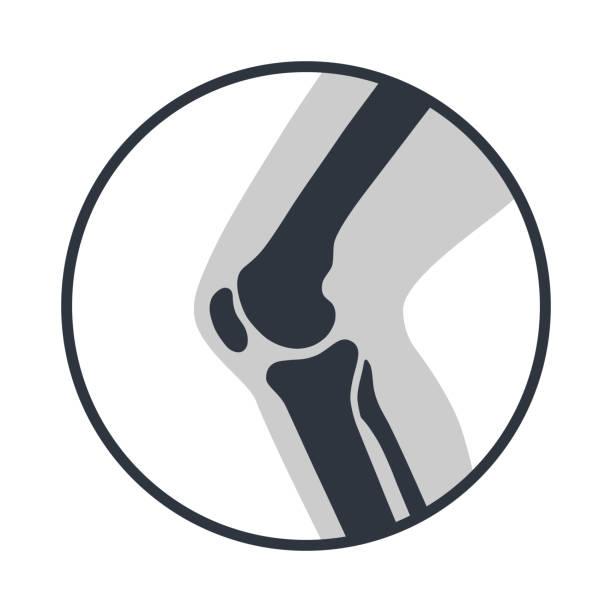 ilustrações, clipart, desenhos animados e ícones de símbolo do joelho - articulação humana