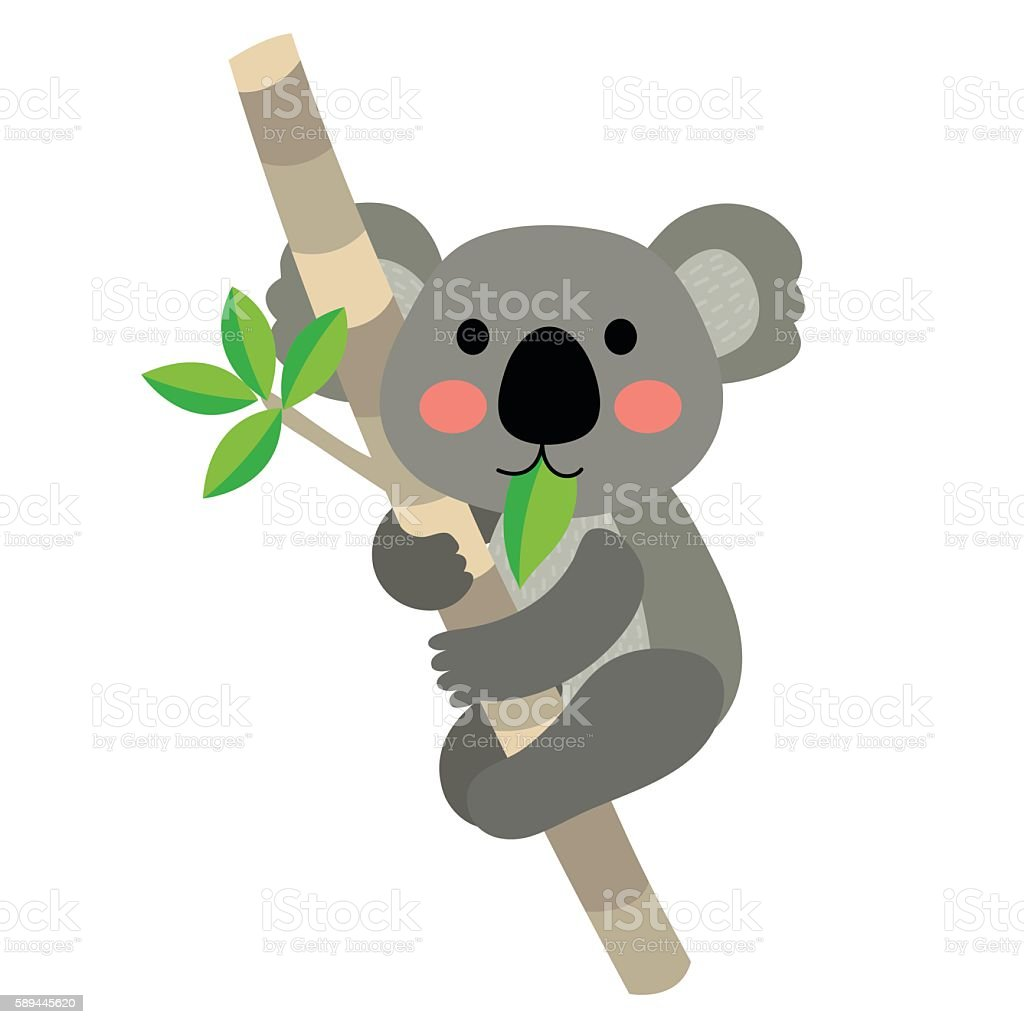 Koala bear animal cartoon character vector illustration. vector art illustration