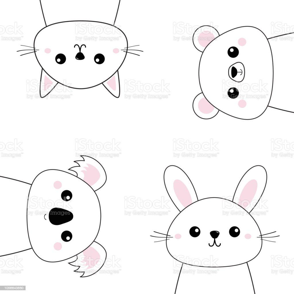 Ilustración De Koala Oso Grizzly Conejo Liebre Gato Gatito La Cara