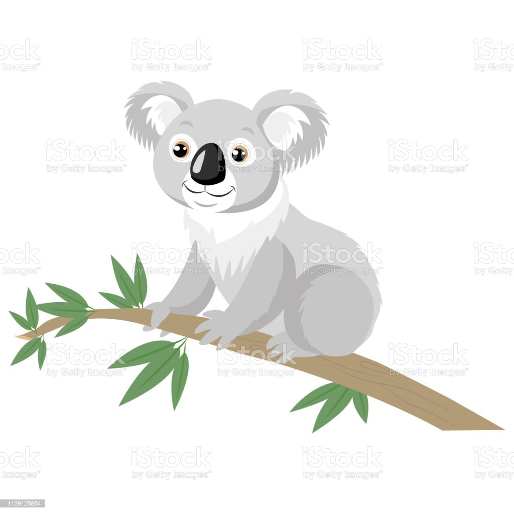Koala Bear On Wood Branch With Green Leaves Stock Illustration Download Image Now Istock